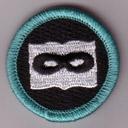 Secret Noveling Badge